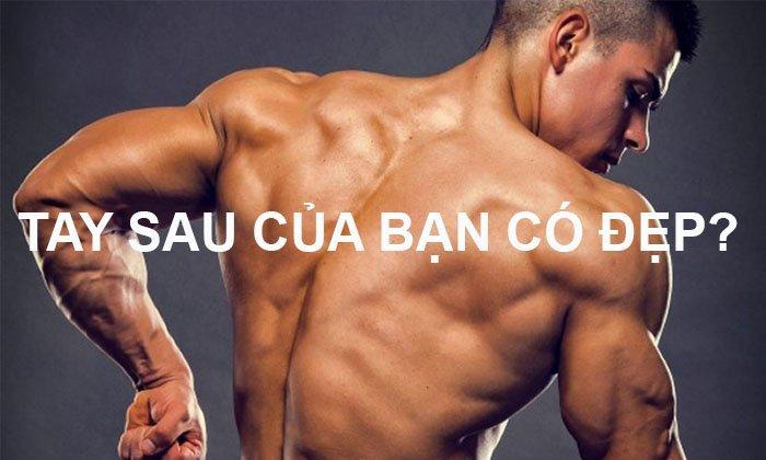 Bài Tập Tay Sau Cho Nam Tốt Nhất