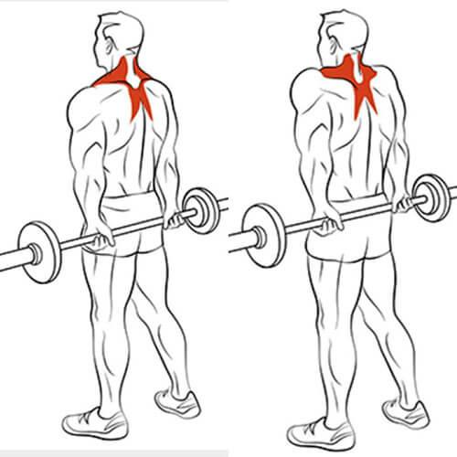 Reverse Grip Rear Shrugs