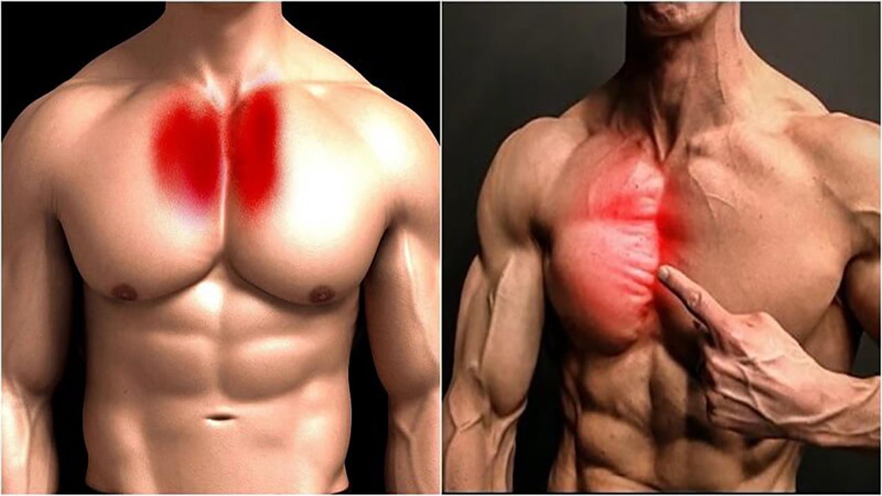 Cách tập luyện cơ ngực trong cho nam tạo rãnh to dày cắt nét