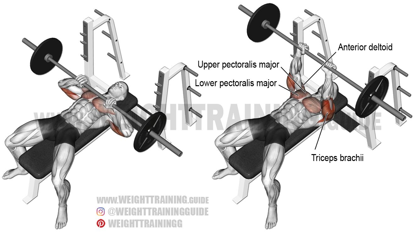 Close Grip Barbell Bench Press - Đẩy tạ nắm tay hẹp
